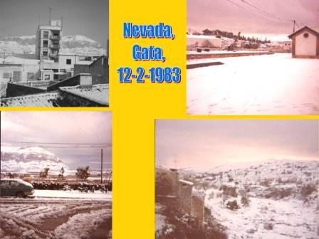 20110212192855-neu28anys.jpg