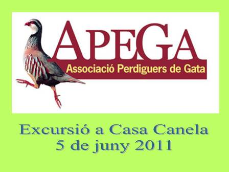 20110529213120-apega1.jpg
