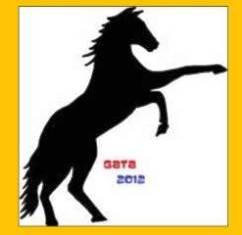 20111001201244-cavall.jpg