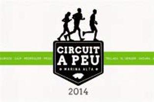 20140612222056-circuit14.jpg