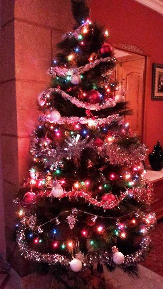 20141212220912-arbrerosa.jpg