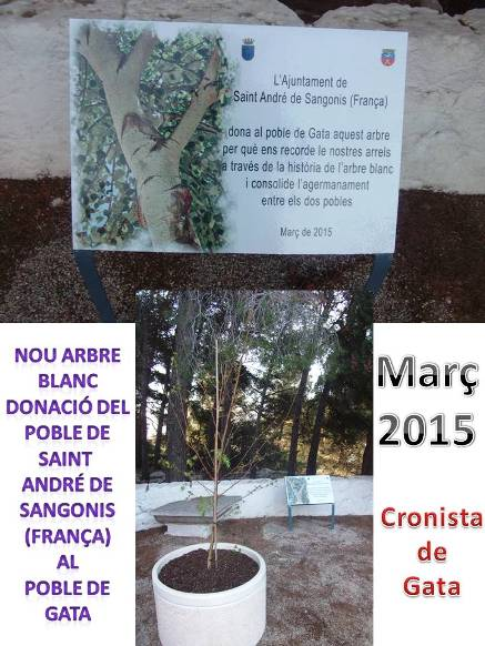 20150403183725-arbreblancfrancesos.jpg