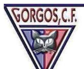 20180116223336-gorgoscf.jpg